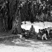 Old men rest while kids play, under a banyan tree. Chinna Vallikulam, Virudhunagar, India