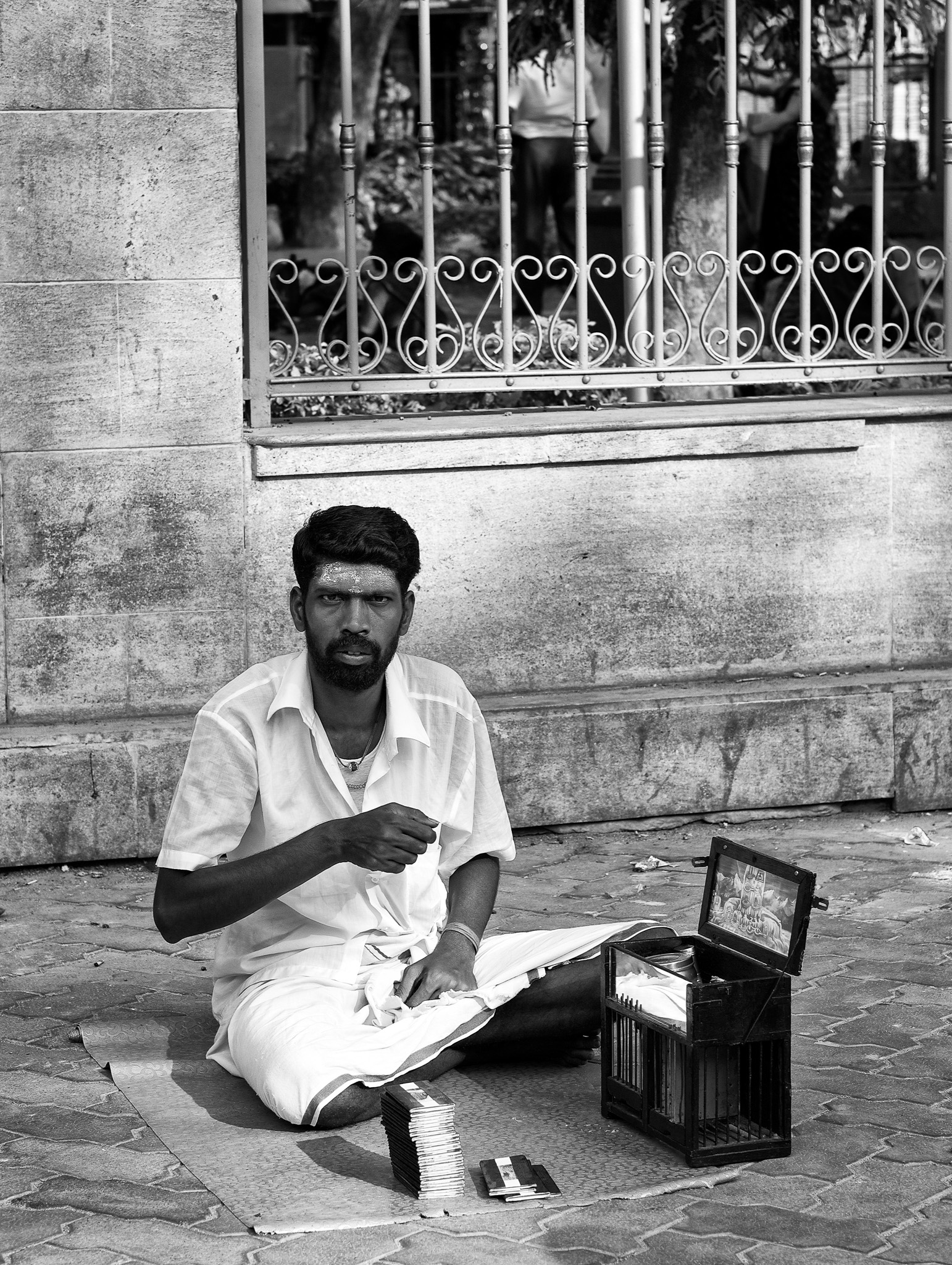 An young parrot-astrologer by the street, waiting for his customers, Madurai, Tamil Nadu, India